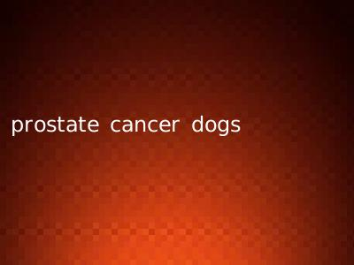prostate cancer dogs