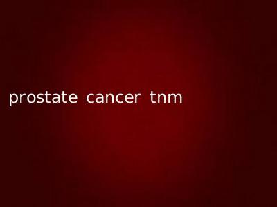 prostate cancer tnm